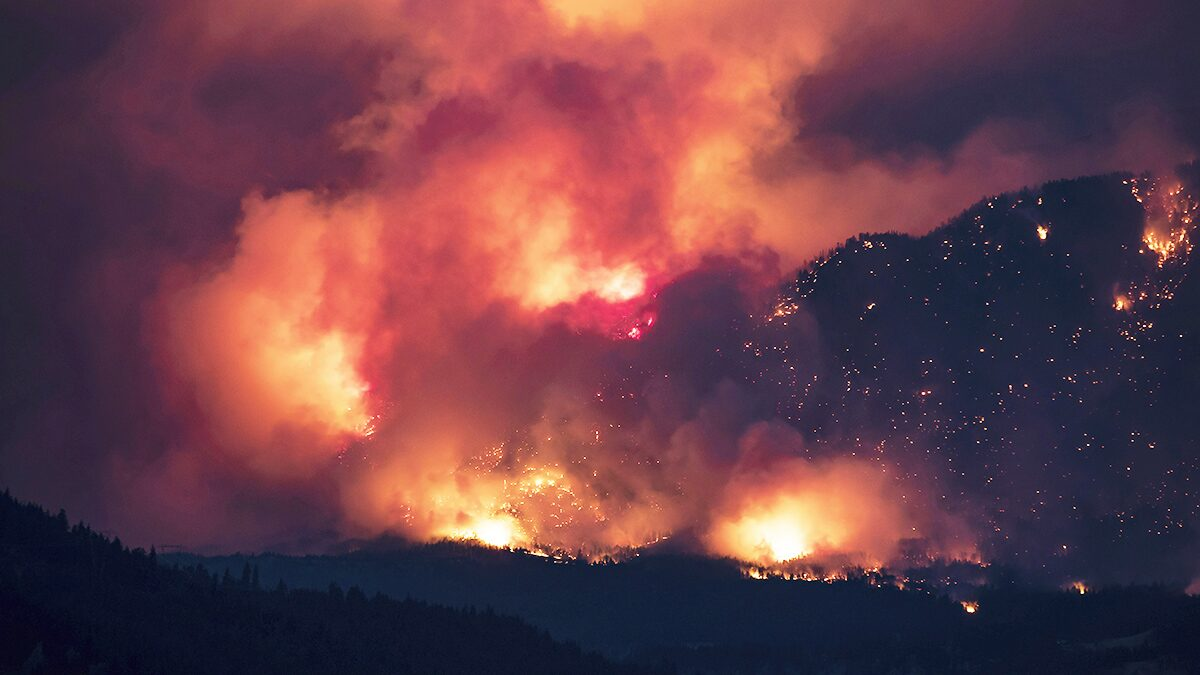 """ฟ้าผ่า1.2หมื่นครั้งโหมไฟป่าแคนาดา – บริติชโคลัมเบียสังเวย """"ฮีตเวฟ"""" ทะลุ700ราย"""